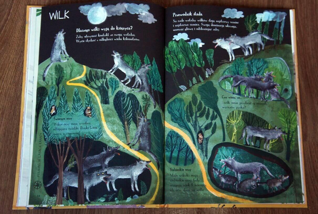 wielka księga ssaków